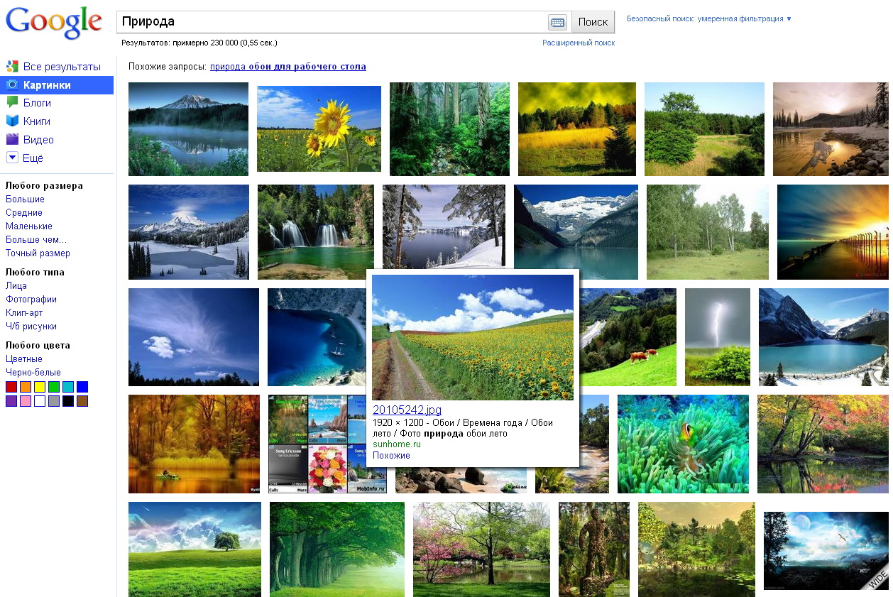 гугл поиск картинки поиск